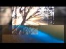 Video-f8892c04798237d8eb5dfd7700d4691b-