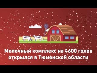 ТОП самых ярких достижений страны за 2017 год  - Молочный комплекс на 4600 голов открылся в Тюменской области