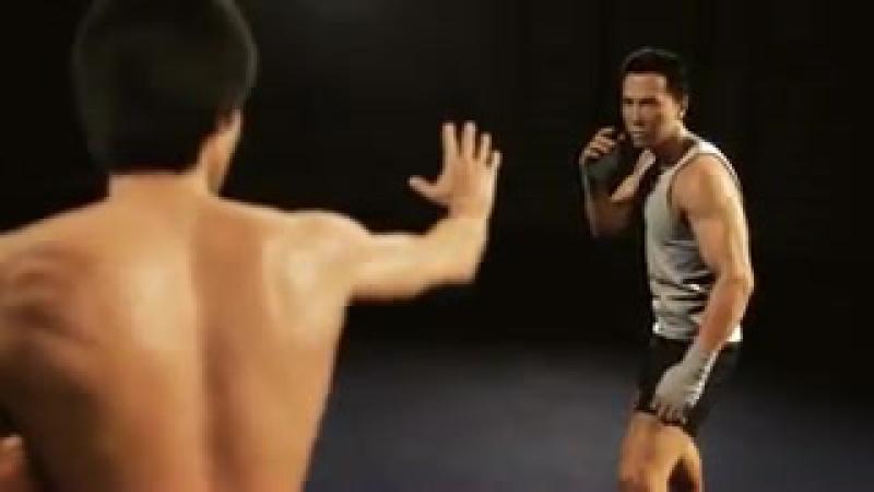 Брюс Ли против Донни Йена Мечта Воина _ Bruce Lee VS Donnie Yen animation A Warriors Dream