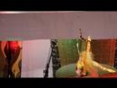 Воздушная гимнастка в кольце Горб Елизавета. Народный цирк Скоморохи ст. Старощербиновская 23.02 2018г.