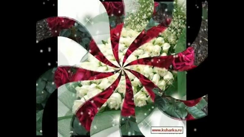 Розы-самые красивые цветы