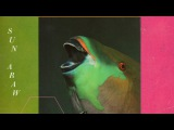 Sun Araw - The Inner Treaty (Full Album - 2012)