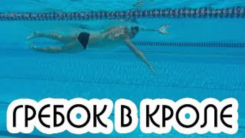 КАК ПРАВИЛЬНО ВЫПОЛНЯТЬ ГРЕБОК В КРОЛЕ? ПЛАВАНИЕ КРОЛЕМ @Swimmate.ru