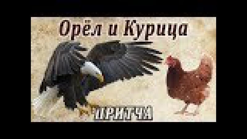 Орёл в Курятнике (Мудрая притча о предназначении человека и его самооценке)