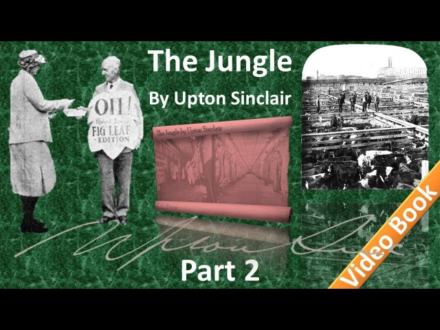 Part 2 - The Jungle Audiobook by Upton Sinclair (Chs 04-07)