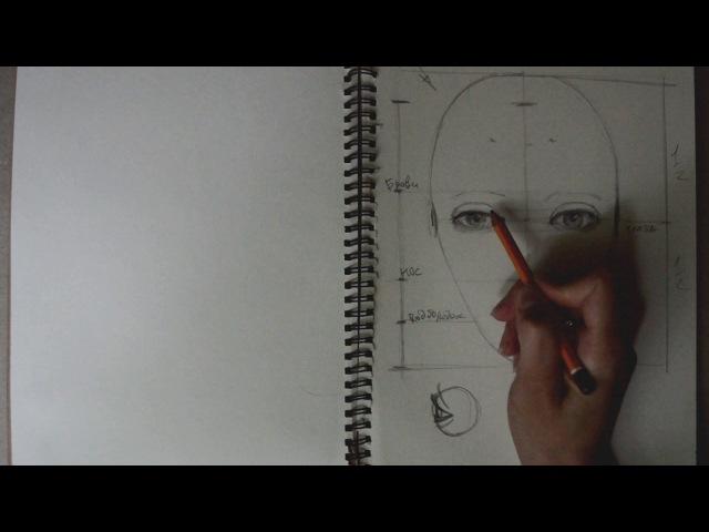 Как нарисовать портрет. Пошаговый урок (пропорции головы). Первая часть, анфас