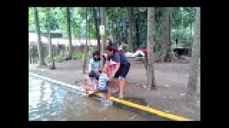 20180225 133124 SRI SULTAN HERU CAKRA di kolam sejuta ikan KAYEN KIDUL - PARE - KEDIRI