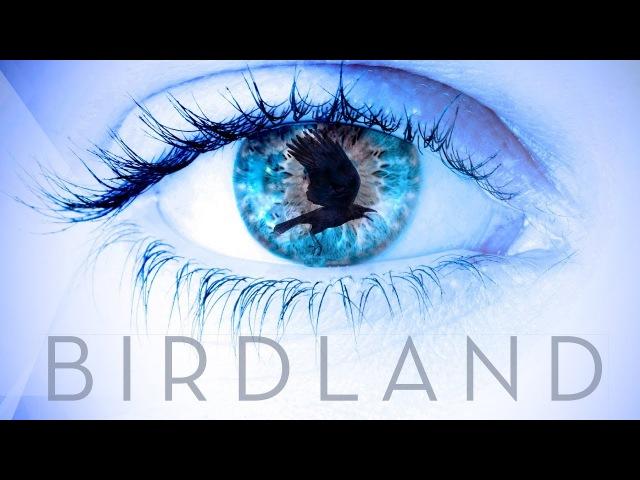 Birdland - Espionage Thriller Trailer 2018