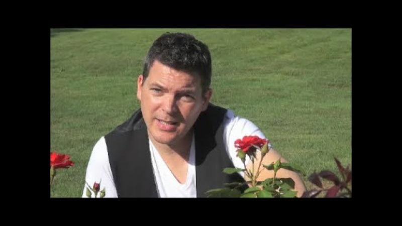 Mario Steffen - Immer wieder mit Dir (offizielles Video)