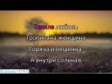 Меладзе Валерий   Текила Любовь     Караоке версия Full HD