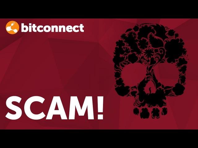 Bitconnect Scam ⛔ Битконнект скам