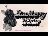 Blackberry Winter - The Aging Chamus 1975 Xian Folk Rock 45