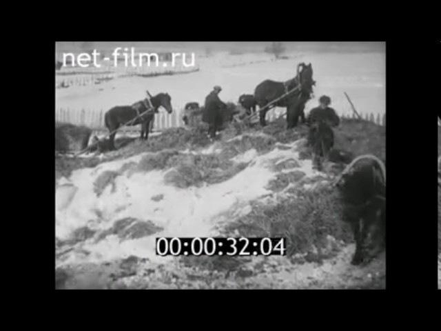 1942г. Чувашия. Чебоксарский район. Якимово. колхоз Молотова