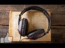 Аудиокнига Стил Терри и Хиллер Стивен Монстры и волшебные палочки