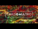 Chris Gall Trio - Sea Lion Woman
