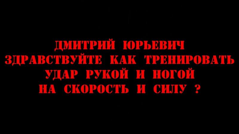 38 Дмитрий Котвицкий - Здравствуйте как тренировать удар рукой и ногой на скорость и силу