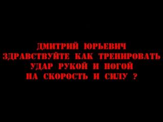 #38 Дмитрий Котвицкий - Здравствуйте как тренировать удар рукой и ногой на скорость и силу