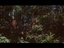 В Зоне Особого Внимания (1978)
