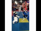 Small taekwondo headhunter