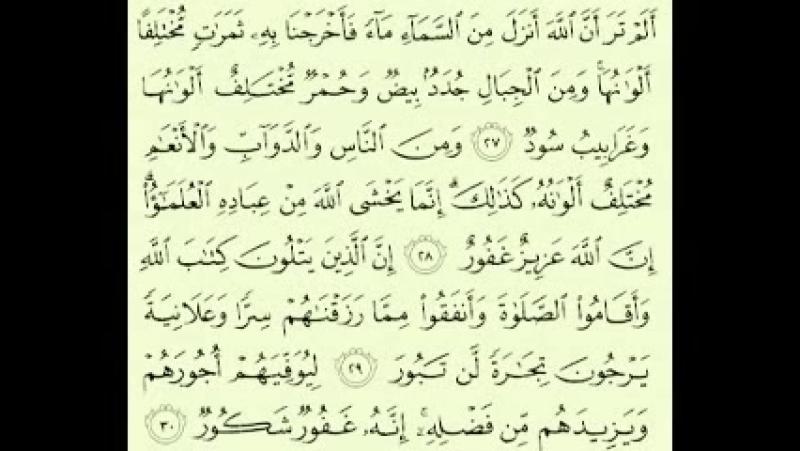 Сура аль Фатыр Махир аль Укайли