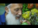 Известный балетмейстер Таджикистана находит утешение в птицах