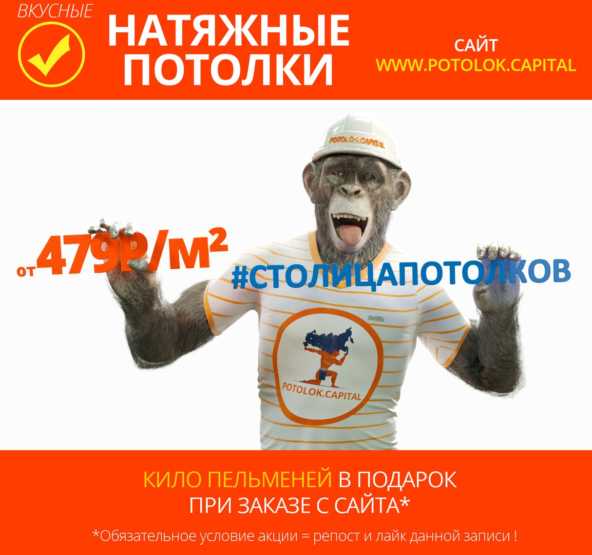gCZMtyhZM2A.jpg
