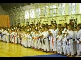 В Бердске состоялся Кубок Новосибирской области по всестилевому каратэ