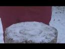 Обзор белорусской тушёнки и кот