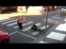Грабитель напал на тян, но получил отпор и откинулся