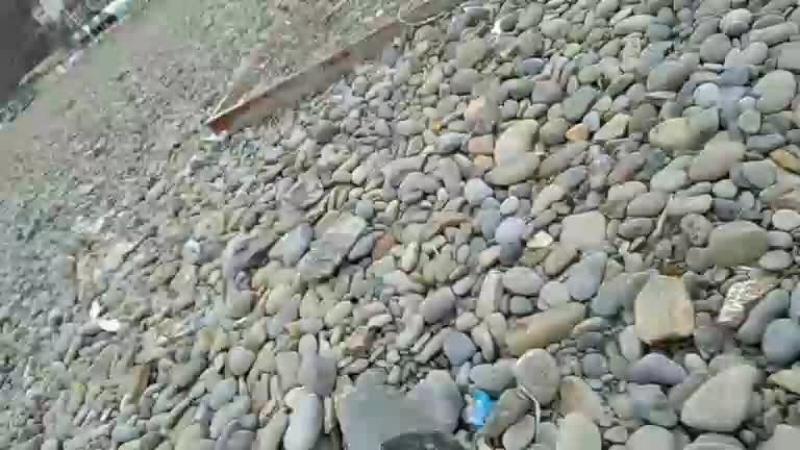 велобратва на море