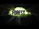 Arcano Games / The Forest Co-Op