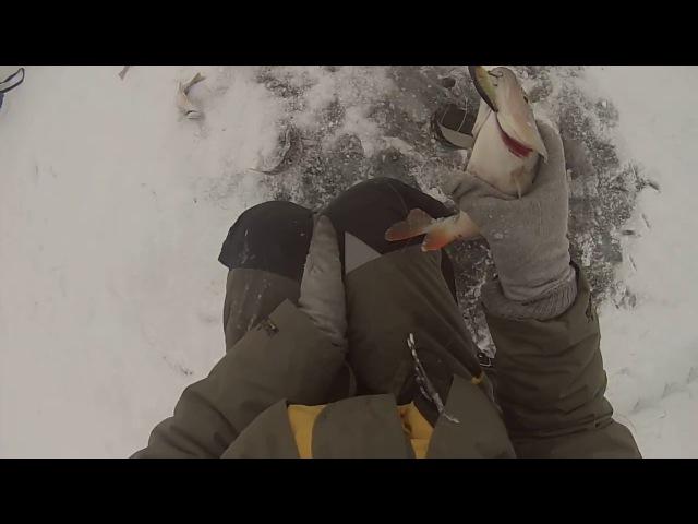 Зимняя рыбалка на озере Долгий сор, Ендра, Шошьегатор ( ХМАО ) 1