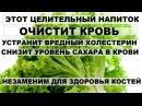 ЦЕЛИТЕЛЬНЫЙ НАПИТОК устранит вредный ХОЛЕСТЕРИН улучшит состав крови Лечебные свойства салата латук