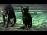 The Witcher 3 Hearts of Stone - Scenes From A Marriage Black Cat &amp Dog Violet Rose Caretaker Chat