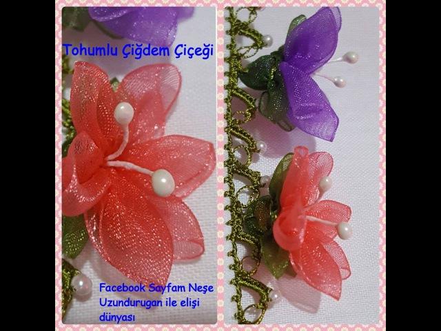 Organze Kurdele oyalarıTOHUMLU ÇİĞDEM ÇİÇEĞİForex flower,health flowerHoliday flowerTaksim flower,