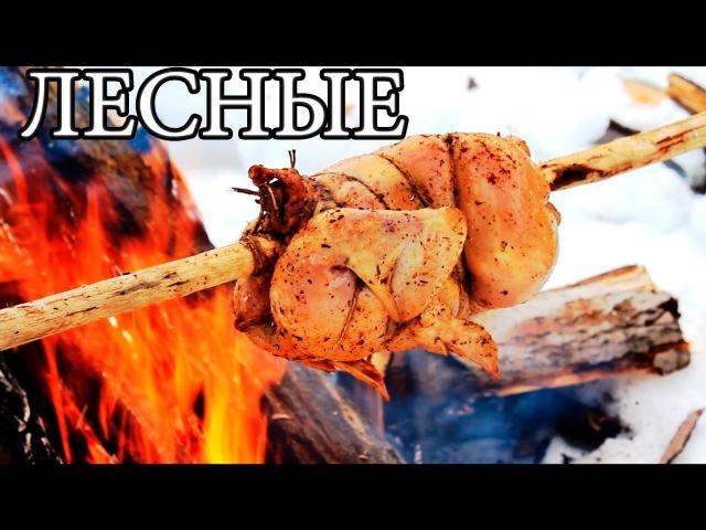 БУШКРАФТ КУХНЯ | Уникальный лесной вертел для мяса, рыбы, птицы - Bushcraft Cooking ,eirhfan re[yz | eybrfkmysq ktcyjq dthntk lk