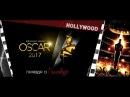 Что скрывает от нас Голливуд Вся правда о Голливуде