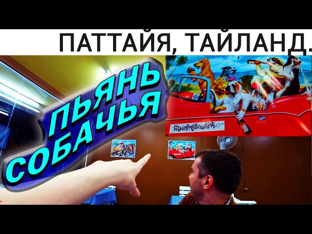 НОВОЕ КАФЕ 24 ЧАСА НА ВАТ БУН (БАН КАНЧАНА АЛЛЕЙ) ТАЙЛАНД 2018