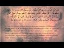 33/42 Основы суда в Исламе