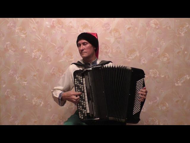 Виктор Гридин. Варииации на тему украинской народной песни « Їхав козак за Дунай »