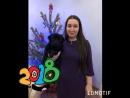 С Новым годом 🎉🎄🍾🎆 друзья! 2018 год собаки 🐶 будет самым счастливым.