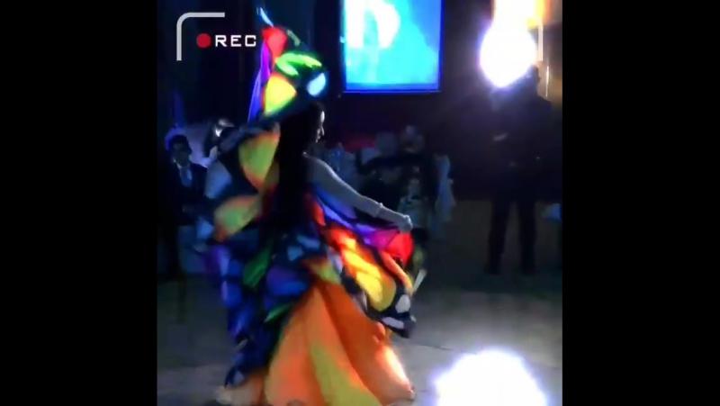 Яна Гильмутдинова bellydancetv tanec jivota