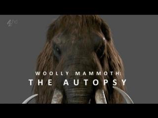 Вскрытие мамонта / Woolly mammoth: The Autopsy (2014)