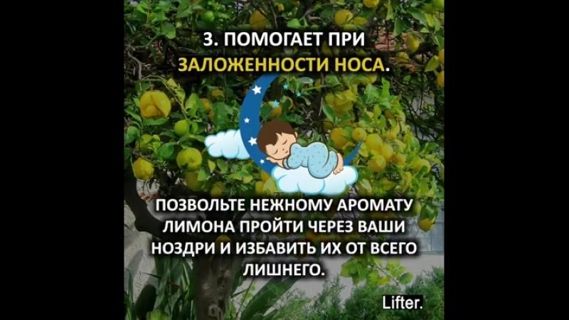 Ставим лимон в спальню на ночь на тумбочку