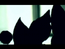 ✩ Просто хочешь ты знать Документальный фильм 2007 год Виктор Цой группа Кино