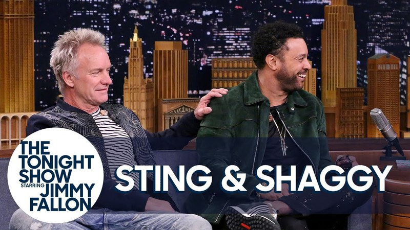 Sting Met Shaggy After He Wandered Onstage During Roxanne