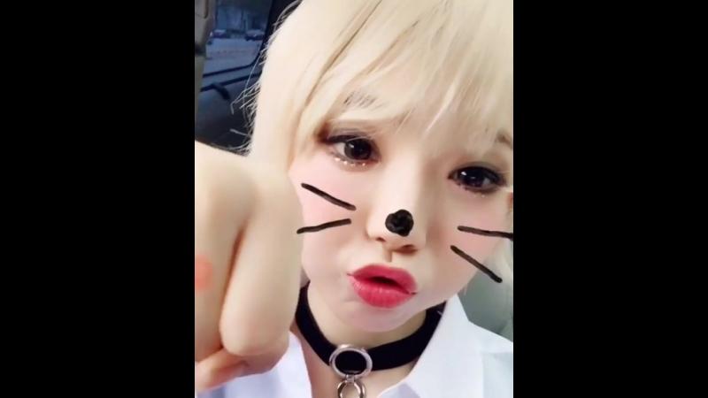 BULLDOK불독_키미 kimi케이코닉kconic♡ on Instagram_ _스케줄상 저.mp4