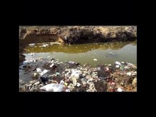Жители Спас-Клепиков сняли на видео несанкционированную свалку в черте города. Об этом YA62.ru сообщил местный житель Сергей Чуб