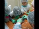 Экскурсия в ветеринарную клинику. Учимся чистить зубки)  2kotadeti детскиеэкскурсии маленькиеветеринары instagr