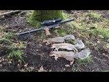 24.09.17 squirrel pest control with ATN Xsight2edgun leshiy